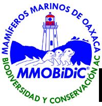 MMOBiDiC